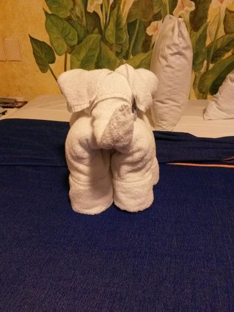 Hotel Banana: Elephant