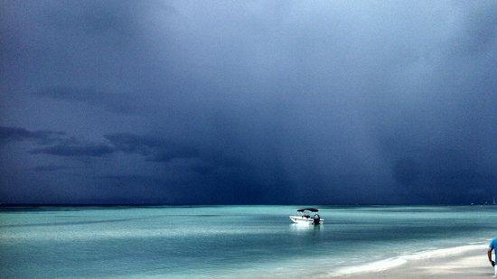 Boardwalk Hotel Aruba: Picture like a painting!