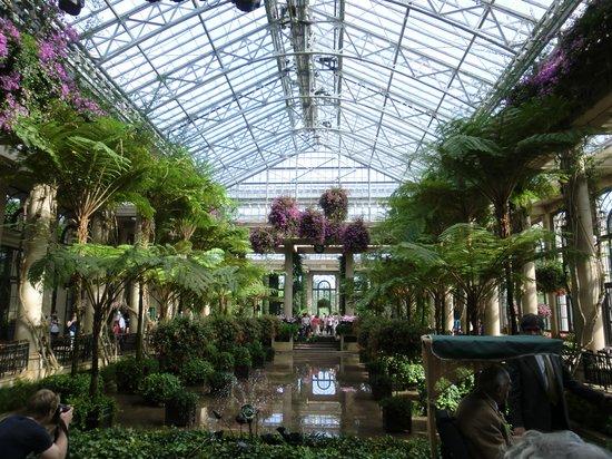 Longwood Gardens : Coservatory indoor pond