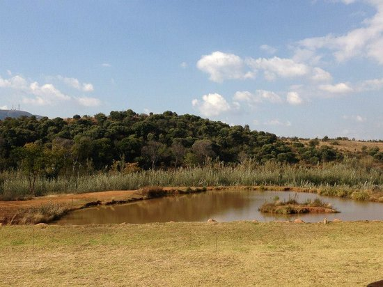 Askari Game Lodge & Spa: View From Lunch