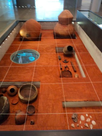 Federal Mato Grosso University do Sul Museum of Archaeology