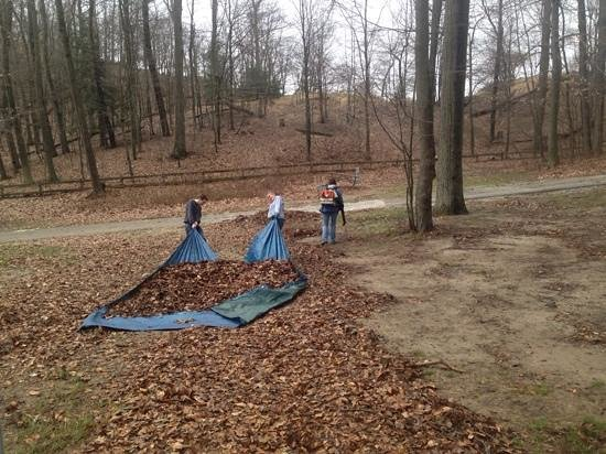 Muskegon State Park: There were LOTS of leaves to move.