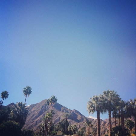 Miramonte Indian Wells Resort & Spa: view from lounge chair