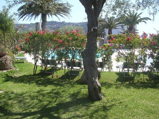 Hotel Ideal: Giardino 2
