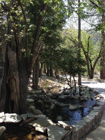 The Grand Idyllwild Lodge: And a stream! Toad croaked at night. :)