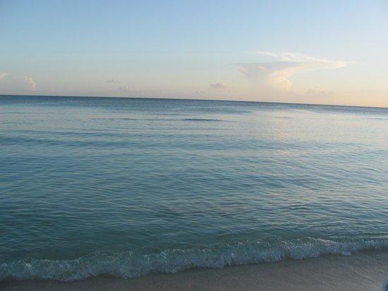 Viva Wyndham Dominicus Beach : El mar