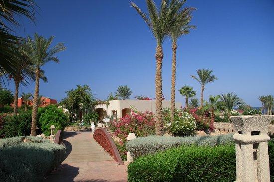 Radisson Blu Resort, Sharm El Sheikh : Resort