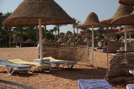 Parrotel Beach Resort : The beach