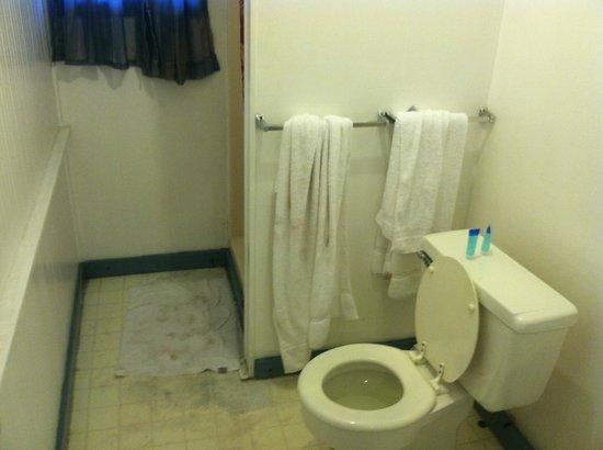 Hermosa Hotel: Shower Area