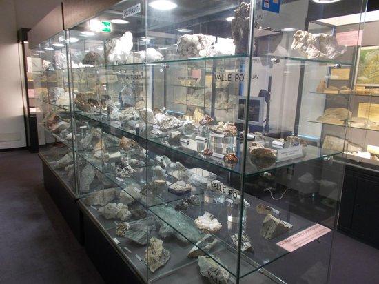 Museo Civico archeologico e di Scienze Naturali F. Eusebio