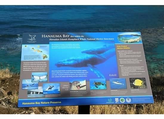 Hanauma Bay Nature Preserve : Preserve sign