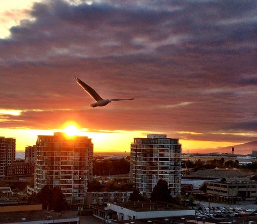 Hilton Vancouver Airport: Our view from room on 15th floor balcony!