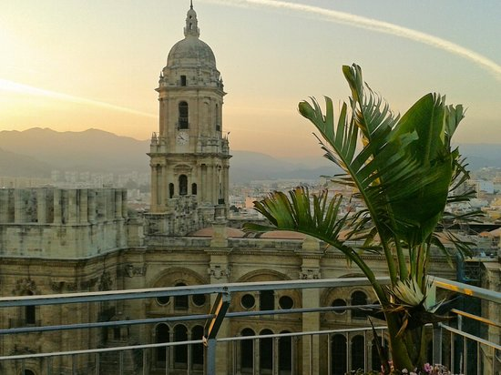 AC Hotel Malaga Palacio by Marriott : Amazing views of the Cathedral
