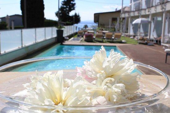 Hotel Villa Katy: Poolbereich