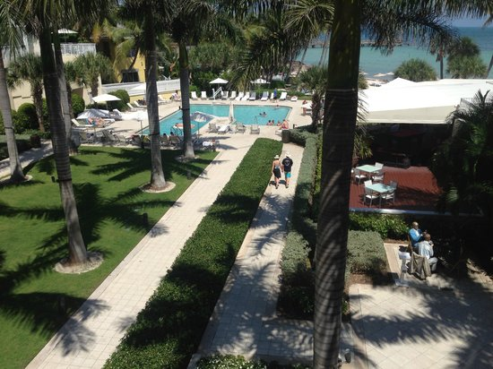 The Reach, A Waldorf Astoria Resort: view from our room of pool and grounds