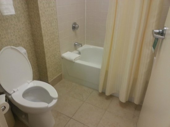 Homewood Suites by Hilton Chicago-Downtown : Bathroom (separate from sink)