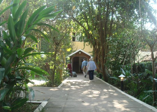 Ilboru Safari Lodge: Walkway to hotel