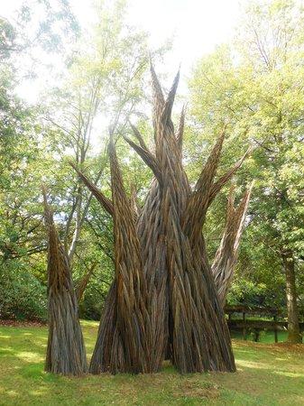 VanDusen Botanical Garden : Interesting art with reeds