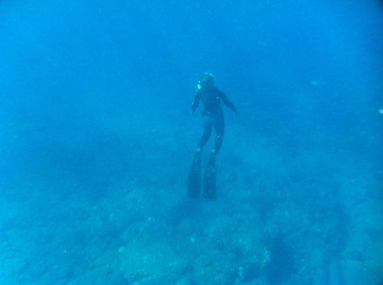 Kauai Sea Rider Snorkel & Whale Watching Tours: Captain Tara