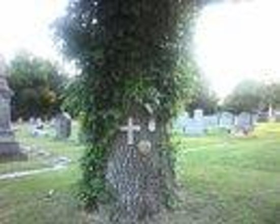 Lebanon, TN: Very interesting cemetery