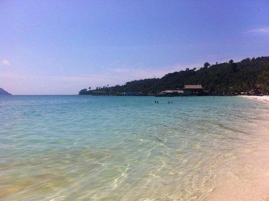 Monkey Island Cambodia Reviews