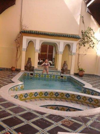 Riad Zitouna: piscine