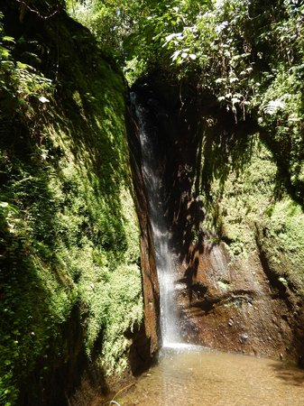 Costa Rica Sky Adventures - Arenal Park: Hiking pictures