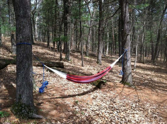Mirror Lake State Park : The Sandstone Ridge Campground is wooded enough.