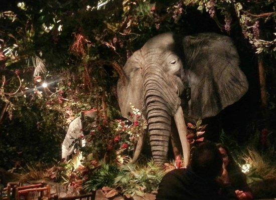 Rainforest Cafe: Realistic Elephants
