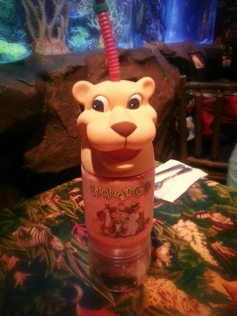 Rainforest Cafe: Souvenir Cup with Icee $8.99