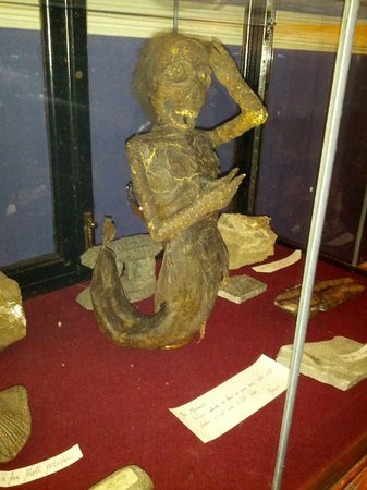 Buxton Museum and Art Gallery: Mermaid May 2014