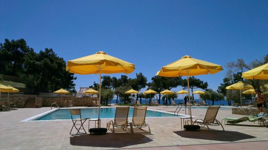 Royal Paradise Beach Resort & Spa: View from the pool sunbed