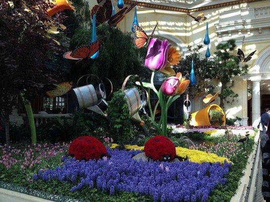 Botanical Garden Picture Of Conservatory Botanical Gardens At Bellagio Las Vegas Tripadvisor