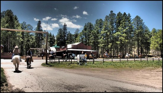 Mormon Lake Lodge and Campground: Horseback Riding