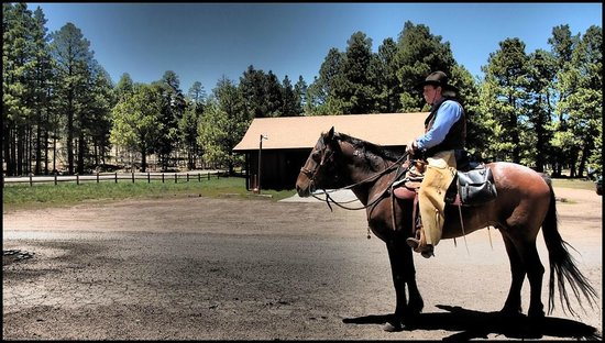Mormon Lake Lodge and Campground : Trail Ride