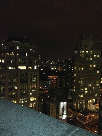 Hampton Inn Manhattan-SoHo : rooftop