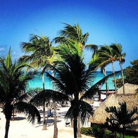 Aruba Marriott Resort & Stellaris Casino: View from the room