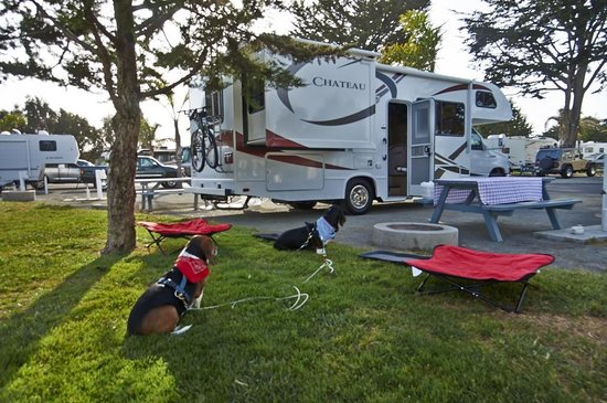 Pismo Coast Village Rv Resort All Set Up In Our E