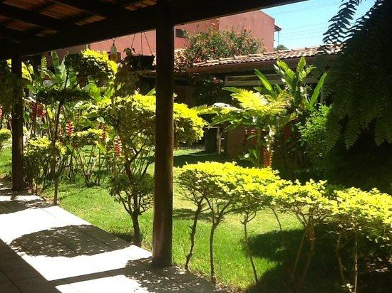 Amazonas : jardim
