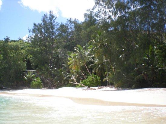 Anse Soleil Beachcomber : Blick auf den Strand