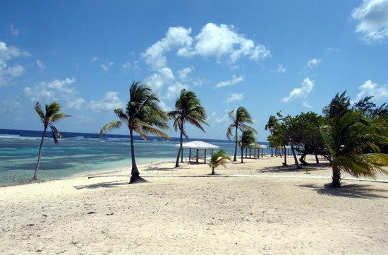 Cayman Brac Beach Resort: The beach from diveshop