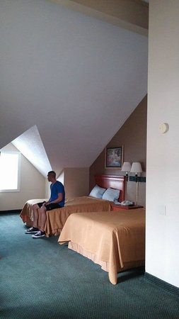 Econo Lodge Inn & Suites: Vaulted ceiling.