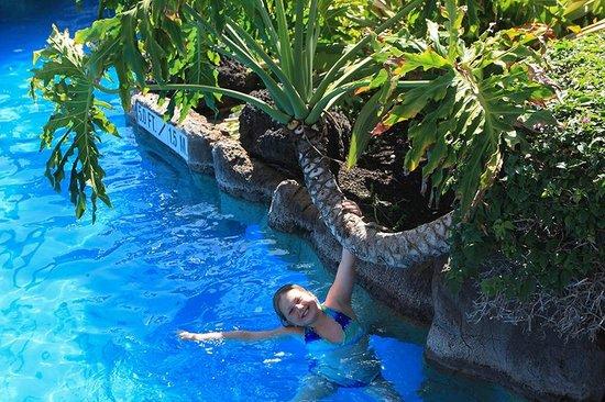 Sheraton Maui Resort & Spa : Kids love the pool here!