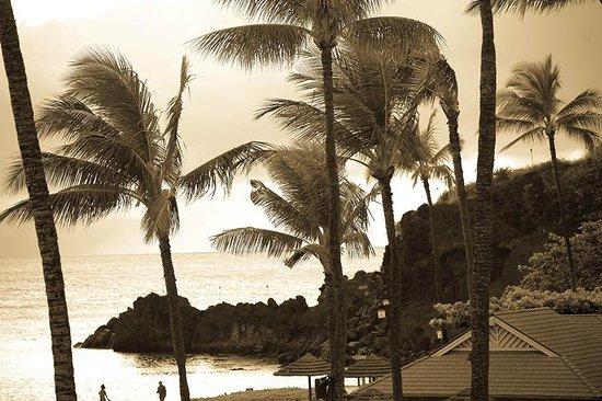 Sheraton Maui Resort & Spa : a little vintage Hawaii
