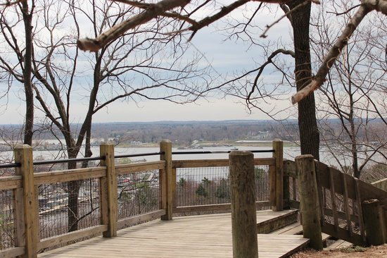 Mount Baldhead Park: Viewing area at the top of the stairs...overlooking Saugatuck