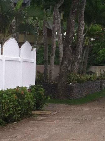 La Paloma Blanca: dirt road in front of condos