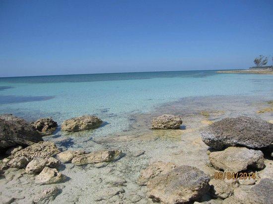 Island Seas Resort: beach
