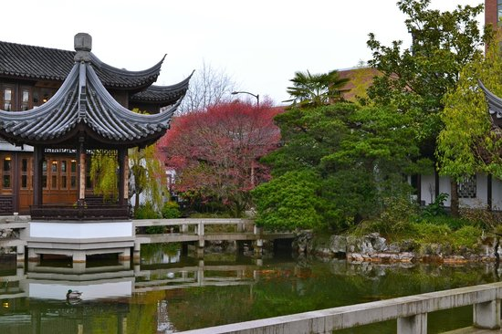 Lan Su Chinese Garden: gorgeous landscape in mid-March