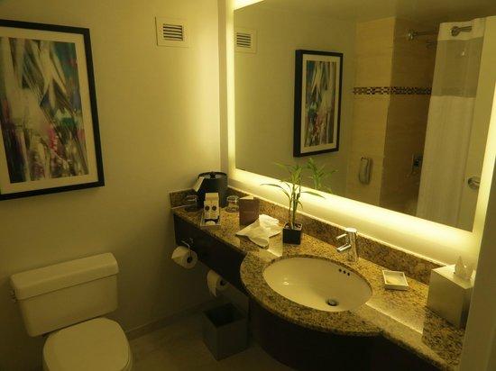 PULLMAN Miami Airport hotel: banheiro