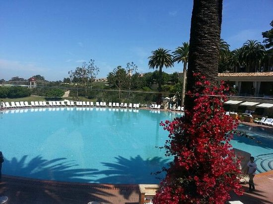 The Resort at Pelican Hill: Coliseum Pool